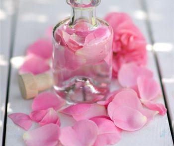 Rose petals water