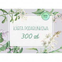 karta300