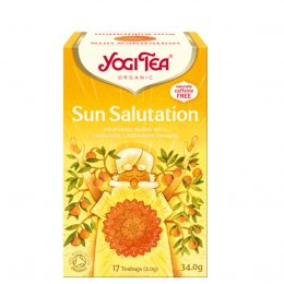Yogi Sun Salutation